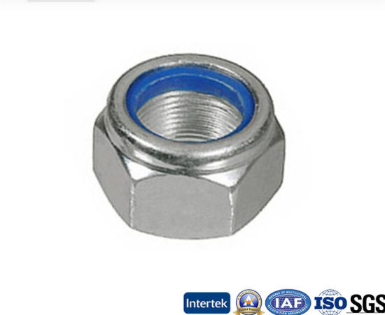 High Quality Stainless Steel Hex Nylon Lock Nut (M3-M48)