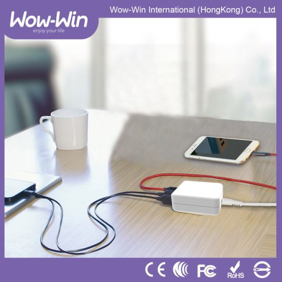 fashion and Popular Type-C and QC3.0 Rechargeable Battery Charger pictures & photos