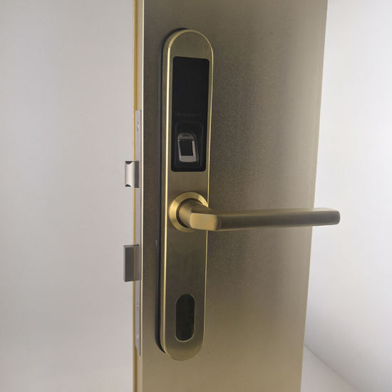 2019 New Electronic Cheap Biometric Home Fingerprint Door Lock Keyless  Password Digital Intelligent Fingerprint Gate Lock