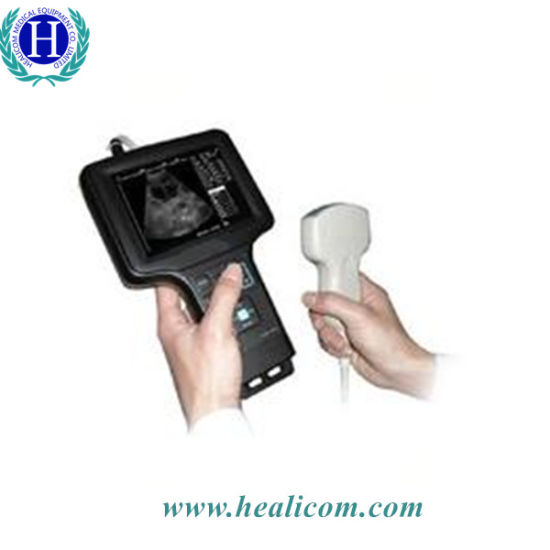 Hv-6 Handle B/W Lowest Price Veterinary Ultrasound Scanner pictures & photos