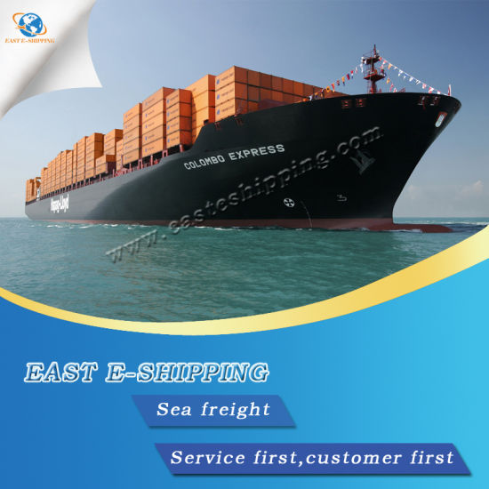 Lowest Sea Freight Rate From China to USA - China Freight