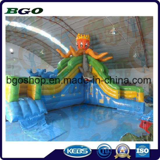 PVC Tarpaulin Inflatable Water Slide (Inflatable Water Game) pictures & photos