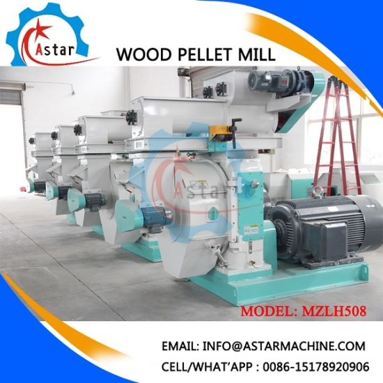 Machine Can Make DIN Plus Wood Pellets Specification pictures & photos