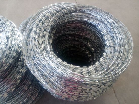 Hot Galvanized Razor Barbed Wire Fence (Bto-28) pictures & photos