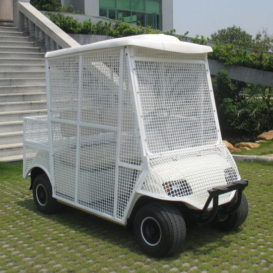 2 Seater White Elctric Pick-up Ball Car for Golf