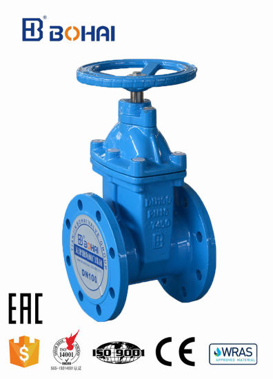 Flanged 2/4/6 Inch Ductile Iron/Wcb/Stainless Steel Gate Valve