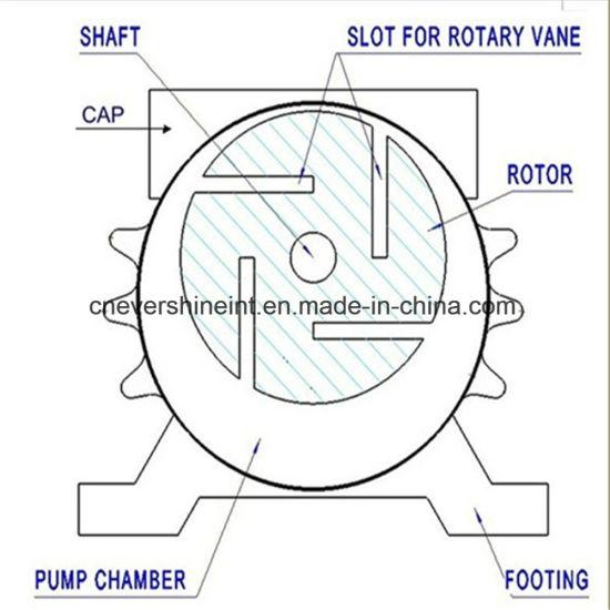 China Vacuum Pump For Milking Machine 250l China Rotary Vacuum