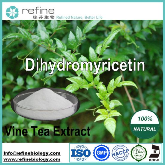 Dihydromyricetin Powder, Vine Tea Extract, 50%, 80%, 90%, 98% (HPLC) Protect Liver Health, 100% Natural pictures & photos