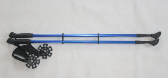 2 Section Without Anti-Shock System Trekking Walking Stick (MW1027A)