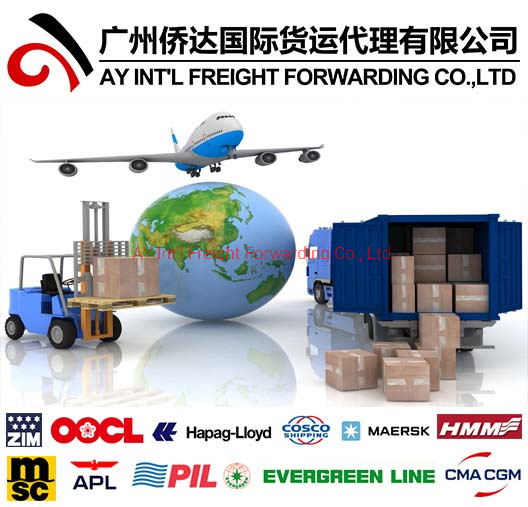 Reliable Shipping Agent From China to Ghana pictures & photos