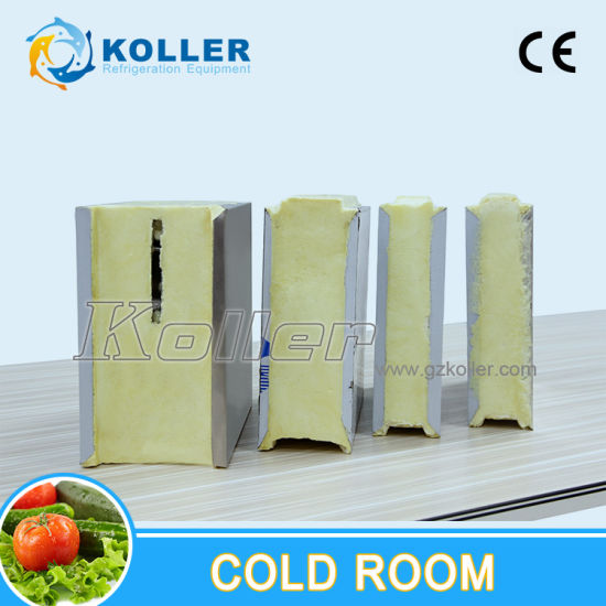 CE Approved Cold Room (VCR20) pictures & photos