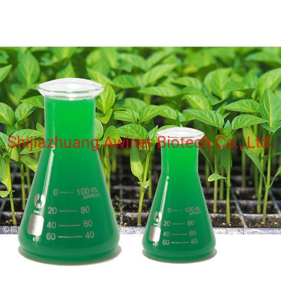 Organic Certified Seaweed Extract Liquid Bio Fertilizer