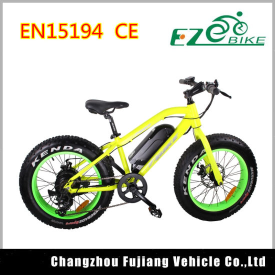 Chinese 20inch Fat Tire Beach Cruiser Electric Fat Bicycle pictures & photos
