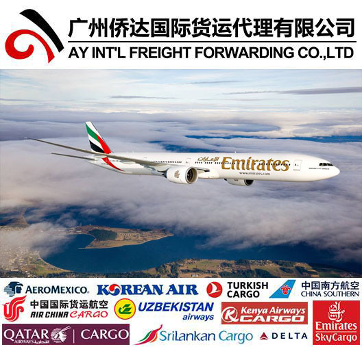 Air Shipping From China to Somalia by Express Courier Services pictures & photos