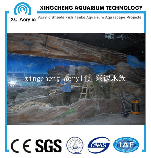 Customized Aquarium Project Acrylic Material Fish Globe pictures & photos