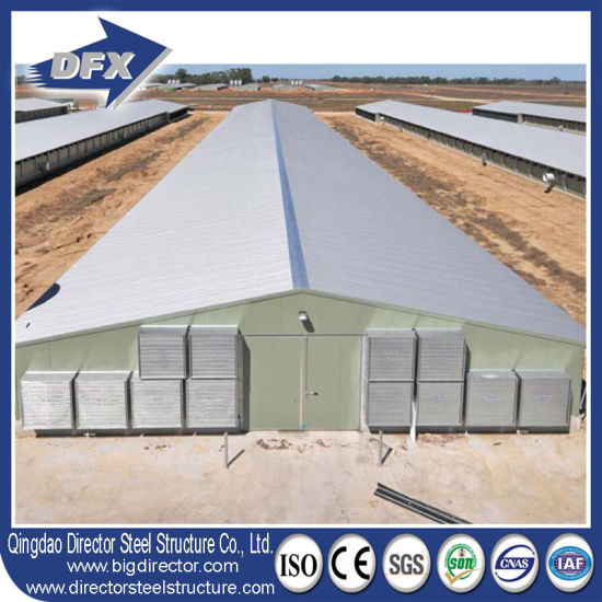 Dfx Steel Structure Chicken Shed Building Controlled Poultry Farms pictures & photos