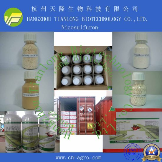 Price Preferential Herbicide Nicosulfuron (95%TC, 75%WP, 75%WDG, 4%OF)