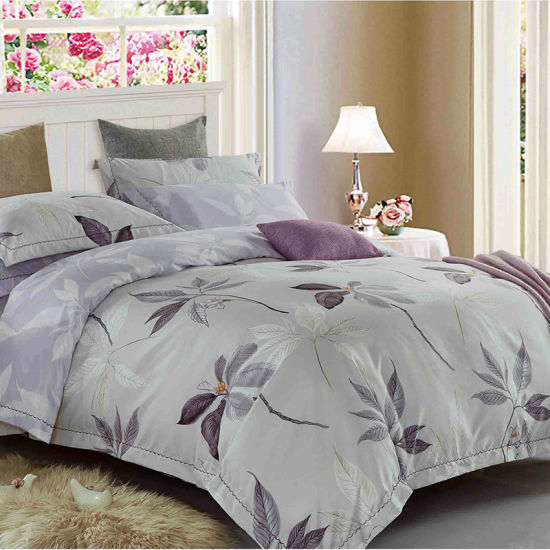 European Style Holicholic Brushed Active Printed 4PCS Bed Set pictures & photos