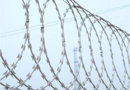 China Low Price Razor Barbed Wire - China Razor Barbed Wire ...