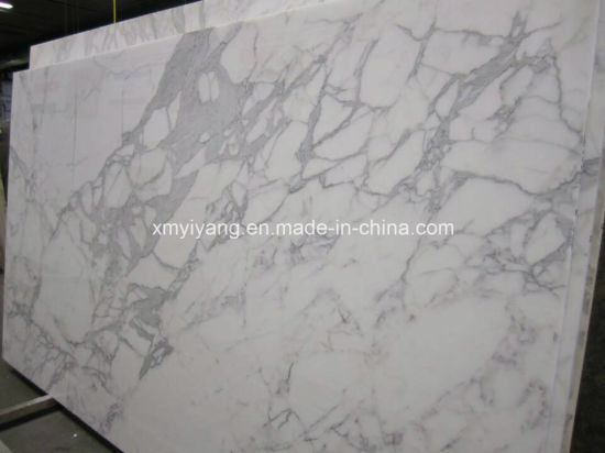 Natural Statuario Venato Stone White Marble for Building Material