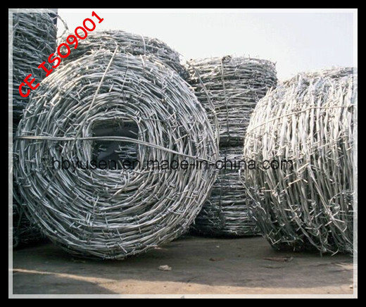Stainless Steel Barbed Wire pictures & photos