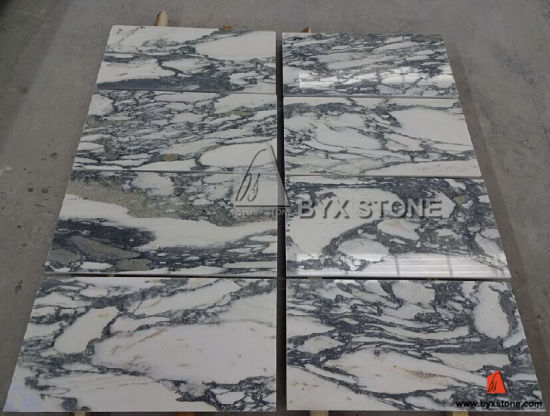 Arabeo Corchia Chinese White Marble