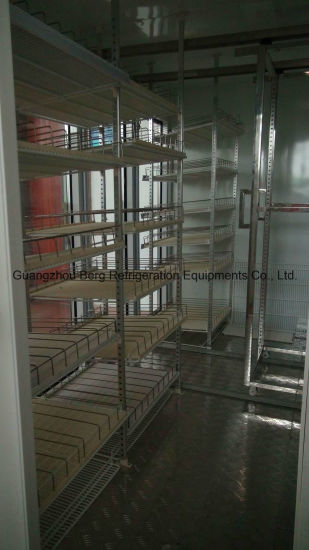 China Convenient Store Commercial Upright Glass Door Walk In Display