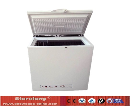 Xd-160 Free Standing Gas Freezer