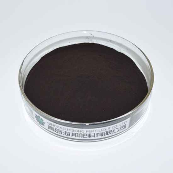Seaweed Extract Grow More Fertilizer
