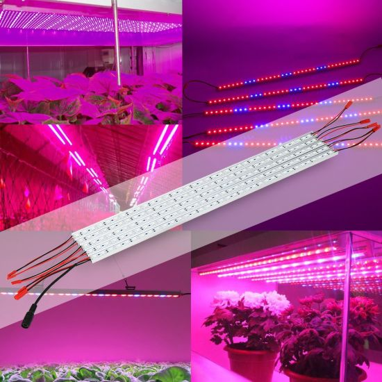 LED grow light strips