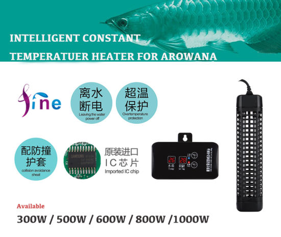 Gardening Tool 1000W Water Heater for Garden Ponds Pools pictures & photos