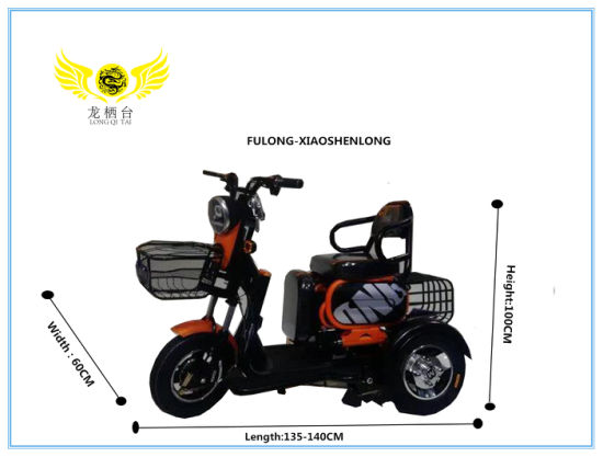 Folding Leisure Small 3-Wheeled Electric Moped Bike Two Seater Tricycle for Aged Adult