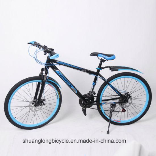 21s Frame Suspension Fork Disc Brake Dirt Bicycle (9632dB)