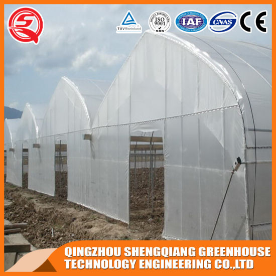 Agriculture Productive Factory Plastic Film Greenhouse for Growing Vegetables/Gardens