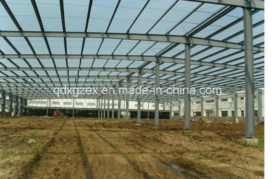 Steel Fabricated House, Light Steel Structure Building (SSW-215)