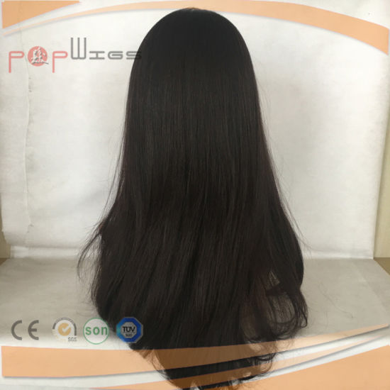 Exquisite Brazilian Virgin Hair Front Lace Wig (PPG-l-0390) pictures & photos