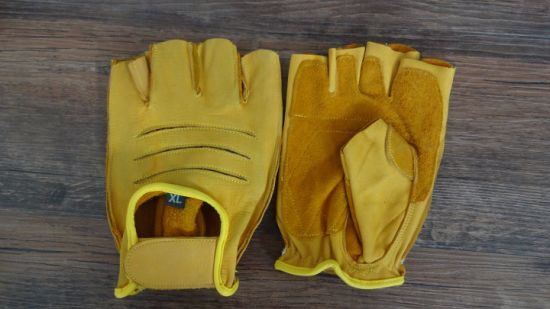 Cow Leather Glove-Half Finger Glove-Sport Glove-Working Glove-Safety Gloves pictures & photos