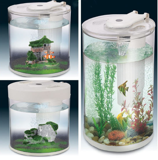 office fish. Office, Hotel, Bar Counter Aquarium Acrylic Fish Tank Office