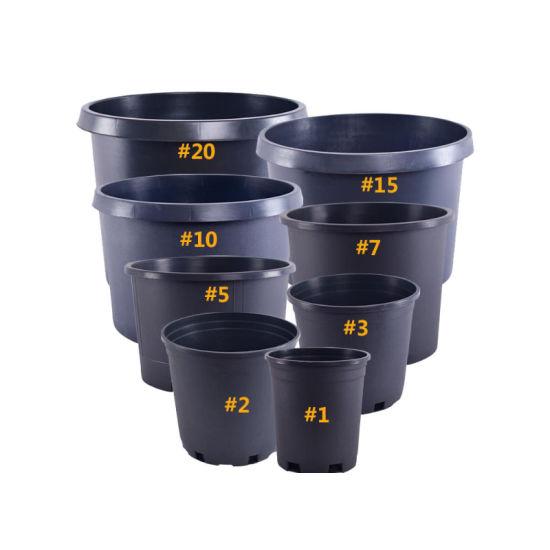 Garden Pot Flower Pot