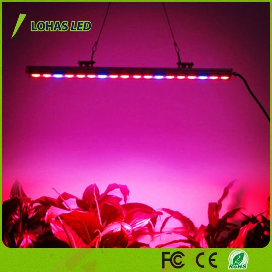 54W 81W 108W Waterproof LED Grow Light Bar Plant Factories or Outdoor Special Environment Fill Light & China 54W 81W 108W Waterproof LED Grow Light Bar Plant Factories or ...