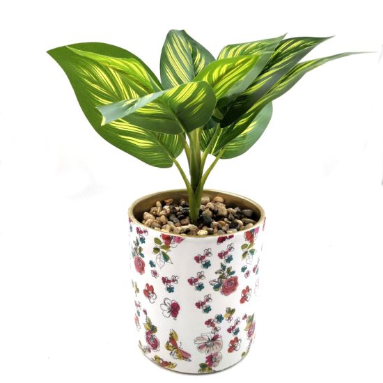 Creative Home Decorative Simulated Potted Flower Pots Ceramic Succulent Planter pictures & photos