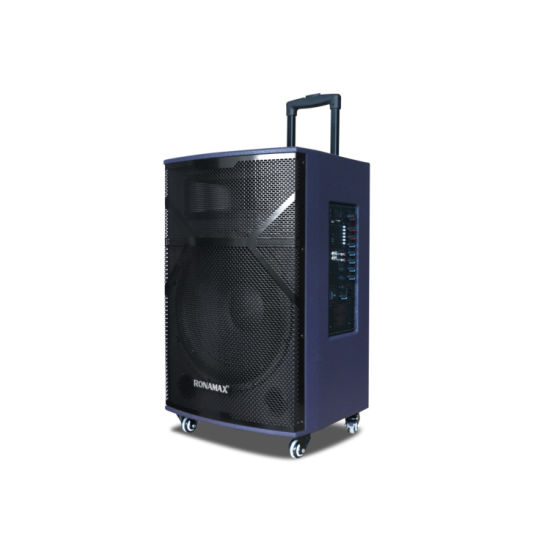 15 Inch PRO Audio Active Multimedia Speaker Sound Box Trolley Bluetooth Speaker pictures & photos