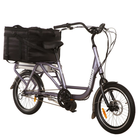 20 Inch Cargo Electric Bike for Delivery/ Cargo Bike Can Be Customized Jb-Tdn03z