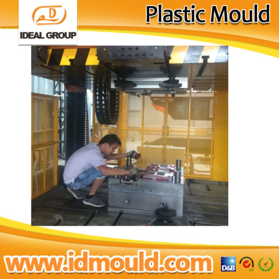 Custom Make High Precision Plastic Molding and Plastic Mold pictures & photos
