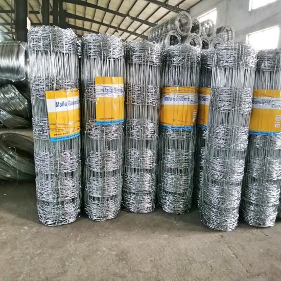 Hot DIP Galvanized High Tension Cheap Hinge Joint Fence for Farm