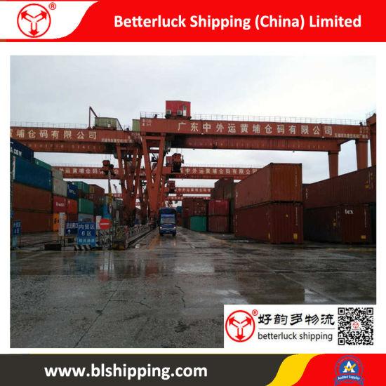 Shipping China to Ajman (U  A  E ) Forwarder Logistics