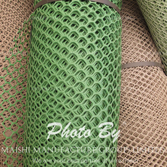 Grass Reinforcement Plastic Net pictures & photos