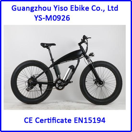 USA A2b Latest Fat Tire Electric Mountain Bike with 500W Motor