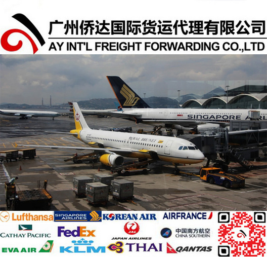 Air Shipping Service to Brunei pictures & photos