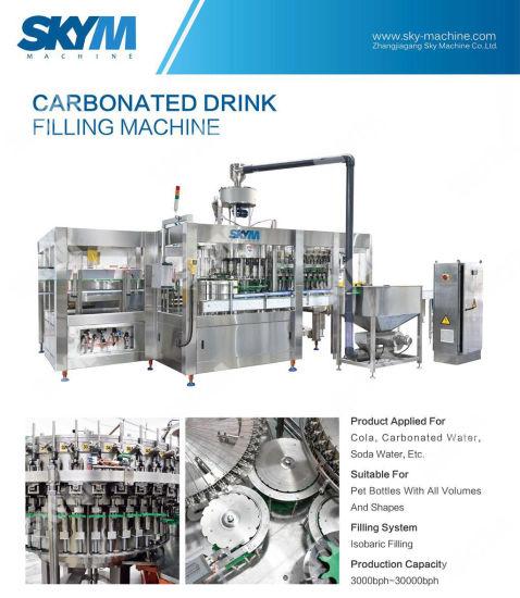 Automatic Liquid Packaging Machine for Filling Pet Plastic Bottle